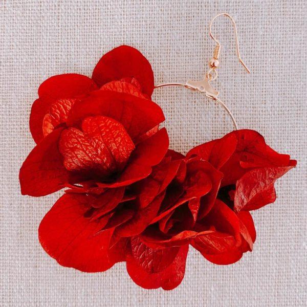 boucles Mayreau - boucles d oreilles vraie fleur hortensia stabilisé Cénélia Martinique
